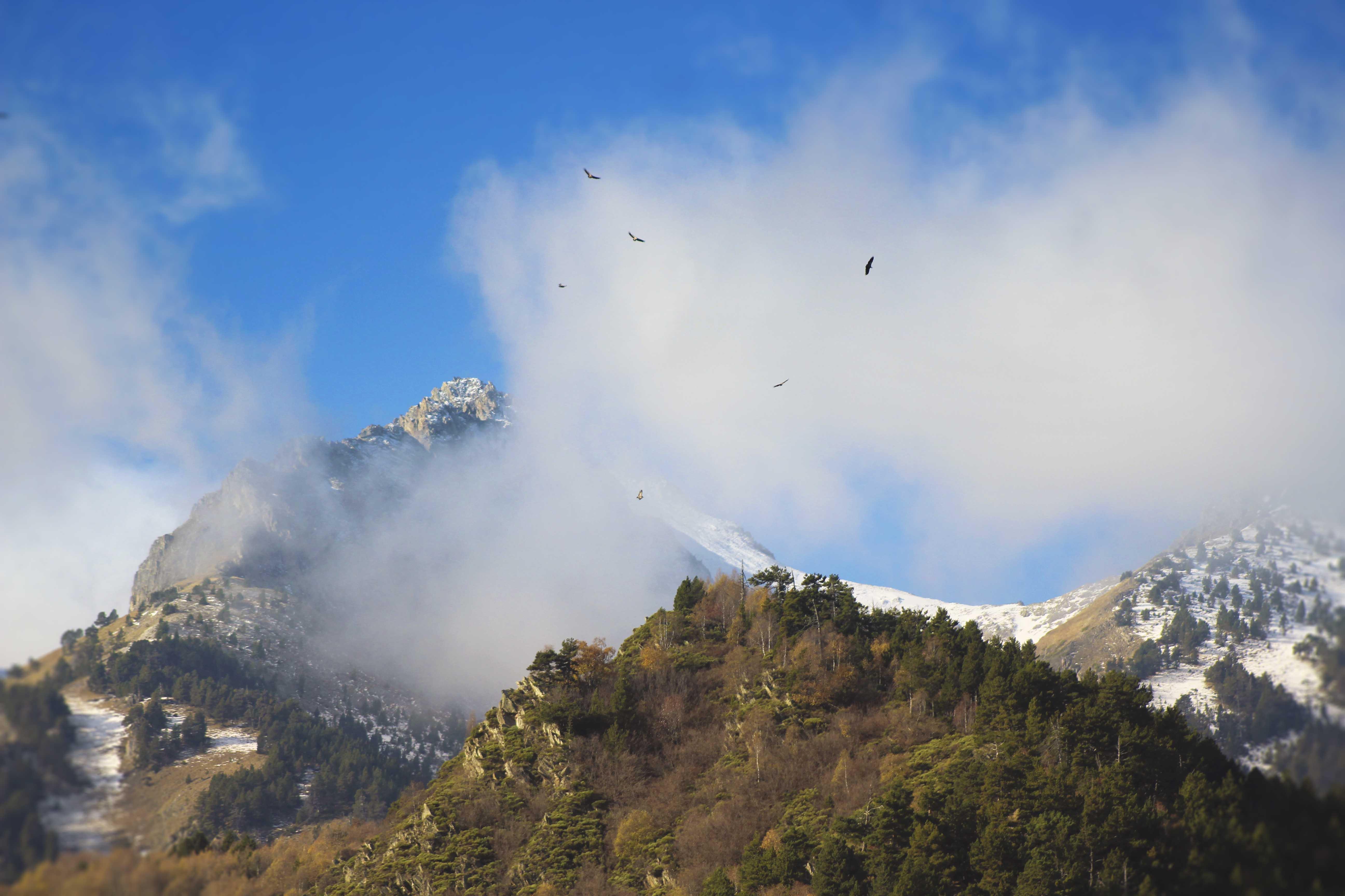 roca-blanca-pirineu