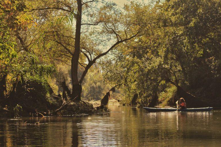 La Ribera d'Ebre, l'Amazònia catalana