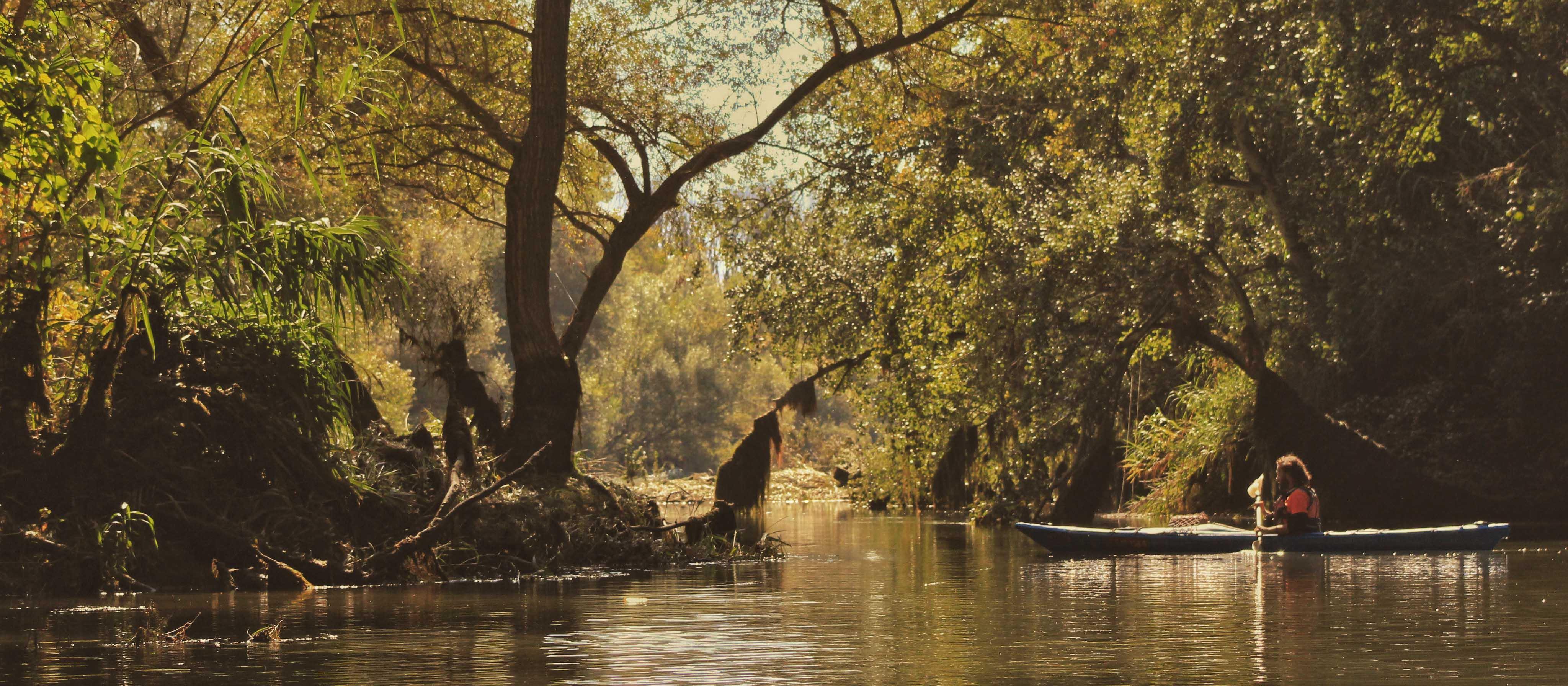ribera-debre-amazonia